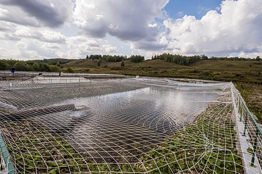 Хорошее место нашли в Лениногорском районе. Произвели оценку качества воды — и по уровню растворенного кислорода, и по остальным основным показателям. И это место нам подошло. Вот где вода — просто рай для царской рыбы!