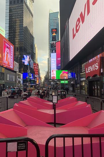 НаТаймс-сквер есть знаменитые розовые лавочки для туристов, укоторых здесьже, рядом, находится вежливая табличка «Дайте возможность полежать другим, находитесь налавке небольше 20 минут»