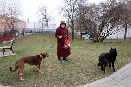Выгул домашних животных на расстоянии, не превышающем 100 метров от места жительства (места пребывания)