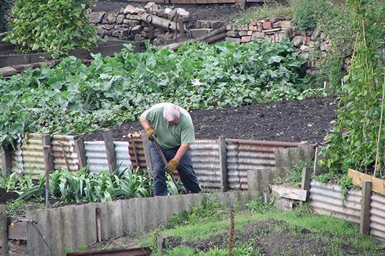 «Союз садоводов добился многих успехов. ВТатарстане действует сельский тариф наэлектроэнергию для садоводов, находящихся всельской местности»