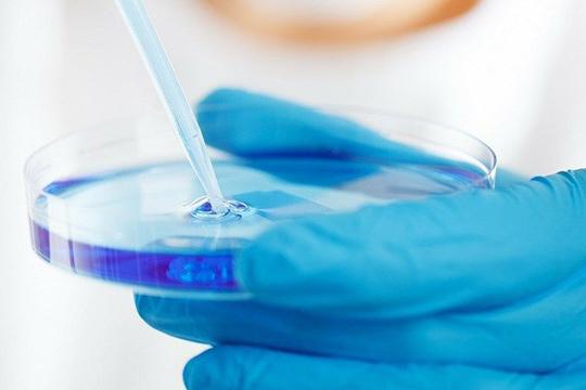 В «Рубине» намерены провести тесты на коронавирус, прежде чем проводить полноценные занятия
