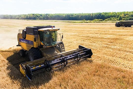 «Рекордные рублевые цены на продовольственную пшеницу на экспортных «воротах» сейчас составляют порядка 15,5 тыс рублей за тонну, это в историческом разрезе самая высокая цена»