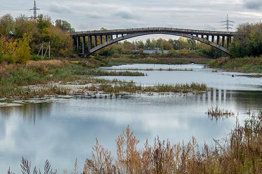 В 2016 году отдел Филиппова вместе с министерством экологии РТ и муниципалитетом занялся подготовкой к очистке Адмиралтейского пруда. Его команде поручили обследование природного объекта