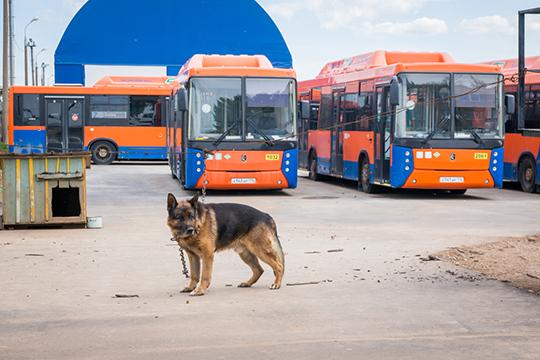 Пассажиропоток вобщественном транспорте всравнении спериодом допандемии значительно упал.Сейчас в Челнах пассажиров перевозит 375 единиц транспорта, в их числе 67 трамваев и 208 автобусов