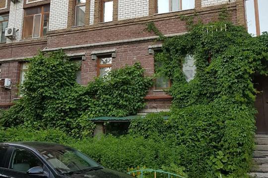 Город требует использовать все возможности — включая так называемое вертикальное озеленение, зеленые кровли и террасы