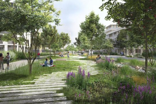 Каждый проект застройки должен содержать определенные площади озелененных пространств. Курс взят на озеленение крупномерами
