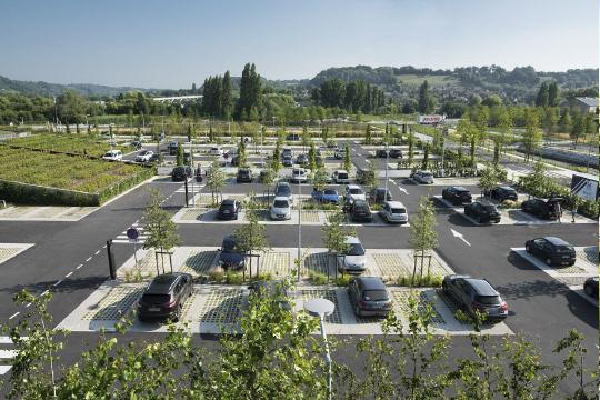 На открытых парковках для 100 и более машин, на промышленных территориях и отдельно стоящих паркингах теперь потребуют посадку деревьев