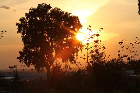 Раз внесколько сот лет происходят Большие Солнечные Минимумы (БСМ). Ихвлияние наклимат столь велико, что меняют судьбы империй ицивилизаций