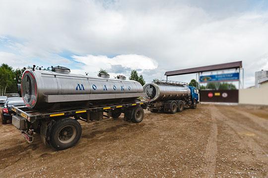 «Молокозаводам мы рекомендуем изучать вопросы экспорта, чтобы работать не только на татарстанский рынок и «яйца» лежали не в одной корзине»