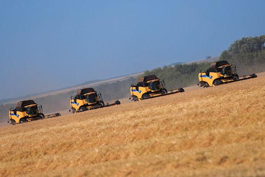 В пресс-службе Минсельхозпрода РТ нам сообщили, что почвенной засухи в Татарстане не наблюдается