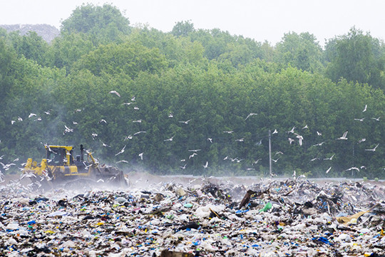 На свалку отправлялось около 30% от всего мусора. В 2018 году это составило около 900 кубов, за вывоз которых Мустафин заплатил 42 тыс. рублей