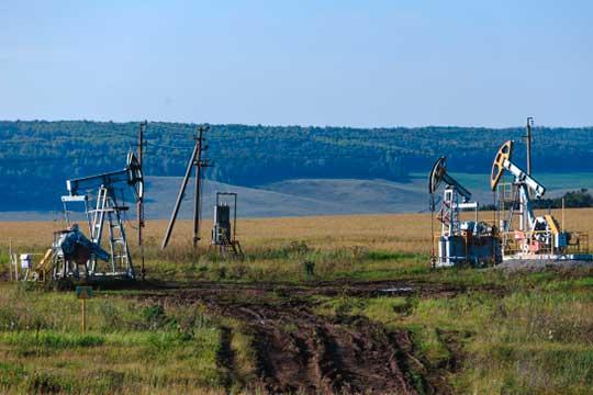 Брилев подсказал, что и«нефть опять 46». «Лучшебы она была чуть побольше,— улыбнулся Путин. —Унас, несмотря нинакакие сложности, растут резервы. Это создает дополнительную подушку безопасности»