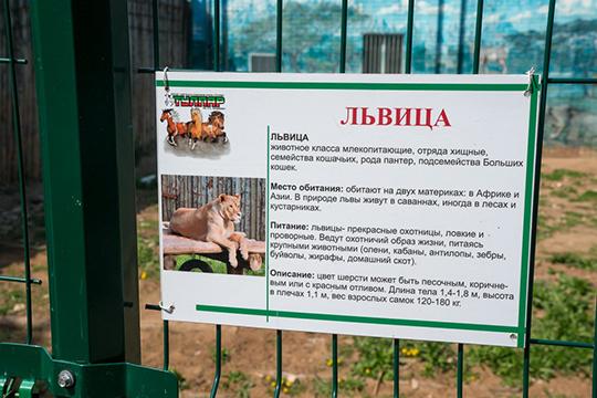 «Указанные животные питаются за счет пищевых остатков от образовательных учреждений города. Где написано, что лев должен питаться остатками из школьных столовых?!»