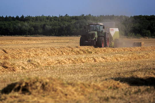 Татарстан относится к рискованной зоне земледелия. Капризы погоды, могут приводить к колебанию урожайности в разы