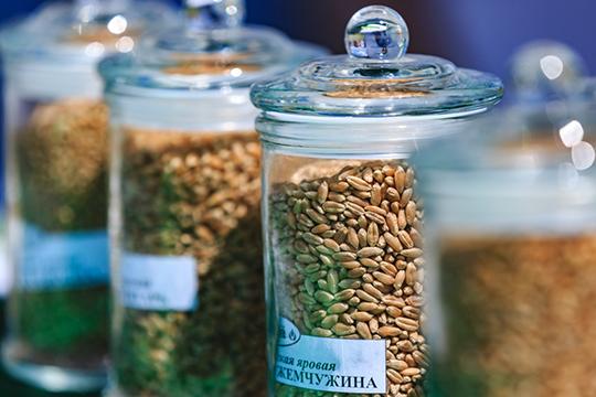 Причин хороших цен на зерно в этом году сразу несколько: юг России летом пострадал от засухи, в частности, в Ставропольском крае зерна собрали на 38% меньше, чем в прошлом году
