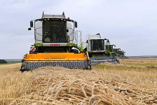 Также хотелось бы отметить ООО «БИО-АГРО» (7) из Черемшана. Согласно официальным данным, у компании 15,4 тыс. га зерновой пашни. Валовой сбор в этом году составил 48,9 тыс. тонн зерна при урожайности 31,7 ц/га