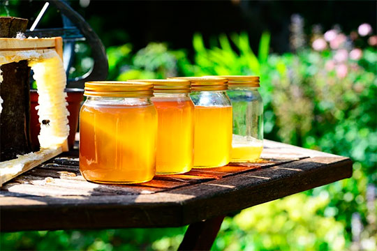 Посодержащимся микроэлементам цветочный мед, думаю, обладает даже бо́льшими полезными свойствами, чем липовый