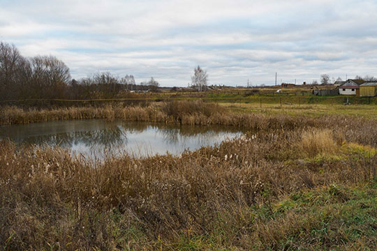 На территории «Залесного», как выяснилось, имеется небольшое озеро, которое стало естественной приманкой для диких пернатых, которые сейчас как раз массово мигрируют на юг