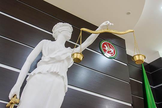 Сначалом локдауна работа судов застопорилась почти надва месяца, акогда возобновилась, дела пришлось рассматривать чутьли непачками