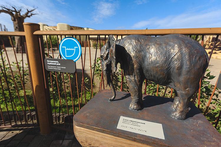 «Около слоновника стоит скульптура слона, которую мы согласовали с Обществом слепых — они одобрили. Была и табличка, но ее украли. Такие скульптуры будут у каждого вольера крупных животных — жираф, бегемот, носорог, слон, горилла, лев»