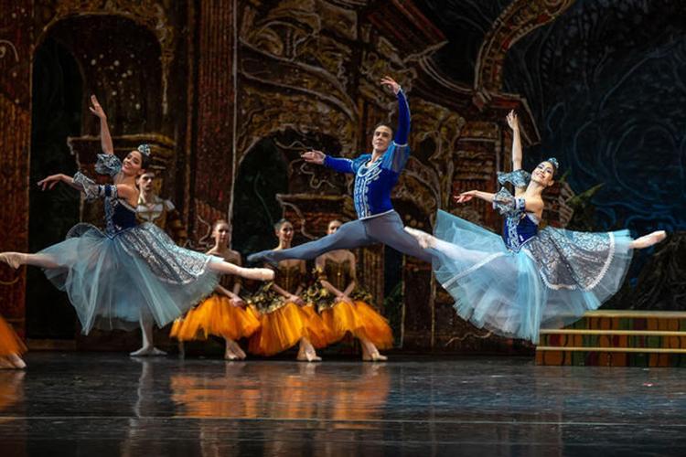 Тест накачество танца первыми пришлось проходить сверстницам принца— хорошо выученным, прыгучим иточным, если непридираться кобщероссийской балетной проблеме стоп