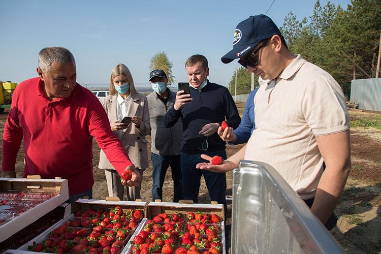 «Садоводство в настоящее время развивается очень серьезно — выращивают яблоки, клубнику, малину. В Буинске у Джамиля Давлетшина сад настолько технологично и красиво сделан! И их продукция пользуется спросом, они на все ярмарки выезжают»