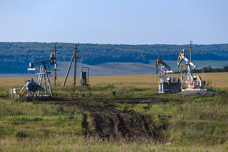 Сильнее всего упали поступления отналога наприбыль— минус 61млрд рублей, или на43% меньше, чем в2019 году. Вчисле «крупняков», которые уронили платежи вбюджет, оказались «Татнефть», «Нижнекамскнефтехим», «Казаньоргсинтез»,«Газпром»…