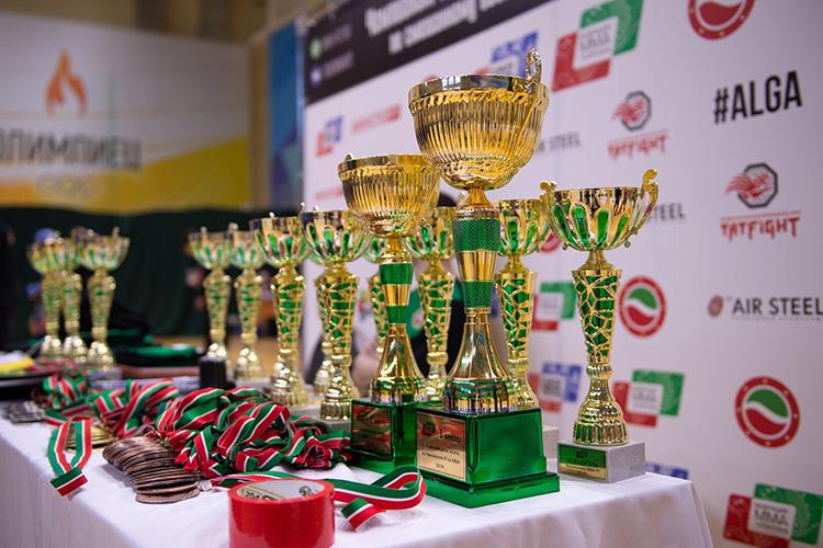 Подобный турнир— отличная возможность, ведь победители вкаждой извесовых категорий получат шанс попасть всборную Татарстана