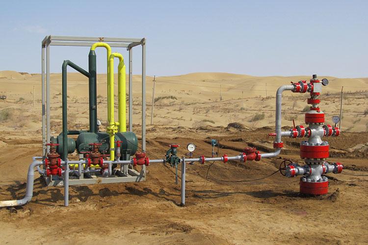 «Для организации нефтедобычи нужно пробурить достаточное количество скважин, создать совместное предприятие сливийской стороной»
