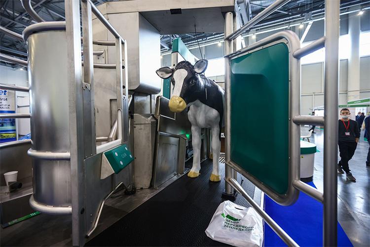 «Сегодня вТатарстане строится 16 молочных комплексов»