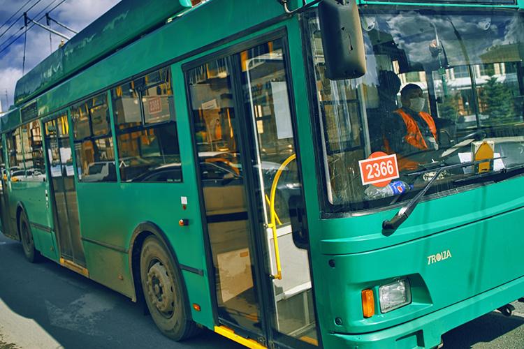Сеть для трамваев итроллейбусов очень дорогая вобслуживании, аниукого нет интереса что-то сложное делать, хочется попроще, полегче. Атранспорт— это неигрушка