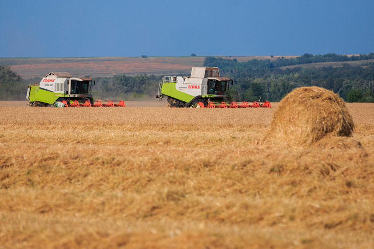 «В сельскохозяйственной отрасли осуществляют производственную деятельность 14 сельхозпредприятий, 35 крестьянских фермерских хозяйств»
