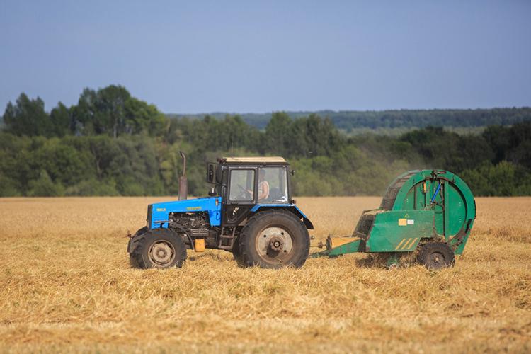 «В2020 году собрали урожай зерновых около 20 тысяч тонн, сучетом сложившихся впрошлом году цен, получился неплохой заработок, «поддержка штанов»