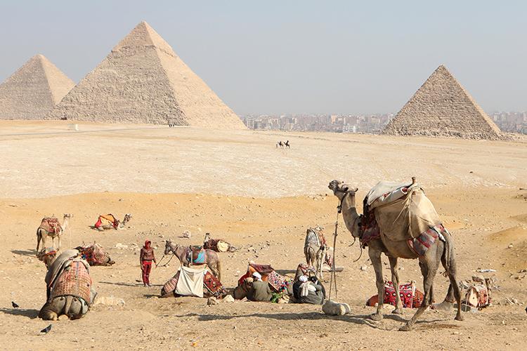 Отом, что Египет готов обеспечить безопасность российских туристов, вСМИ заявил иегипетский коллега ЛавроваСамех Шукри