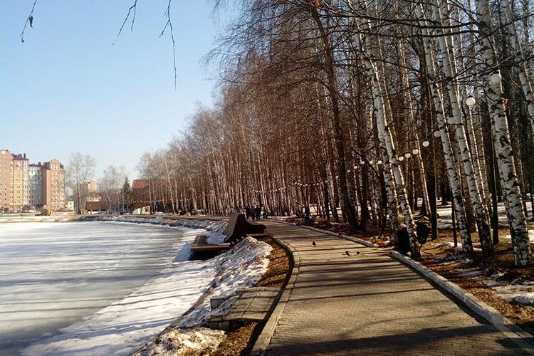 Местные жители бунтуют против намерения муниципальных властей построить «Макдоналдс» в парке «Авангард»