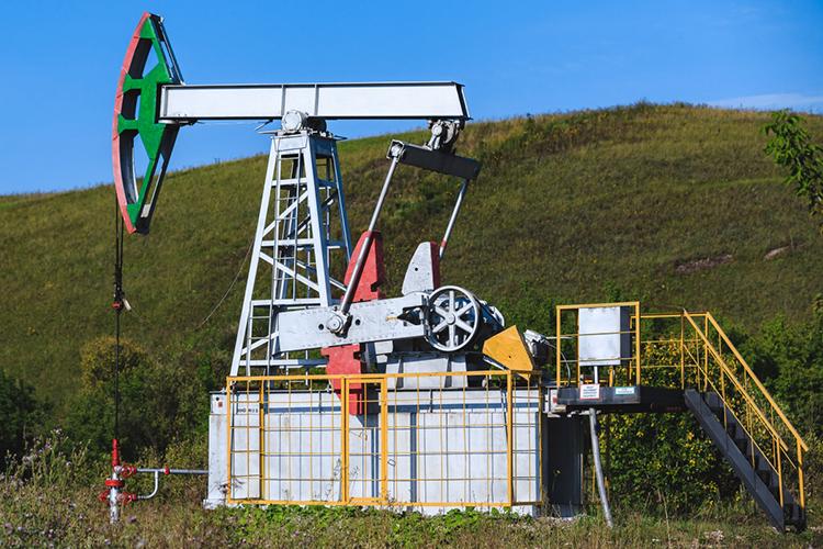 Руководство Татнефти, анализируя достижения 2020-го, отметило две важнейшие причины падения прибыли: более низкие цены нанефть, иболее низкие цены нанефтепродукты
