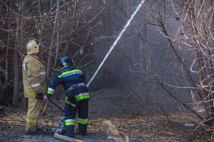 Еще одним нонсенсом для республики стали лесные пожары. После многолетнего перерыва леса Татарстана горели два раза