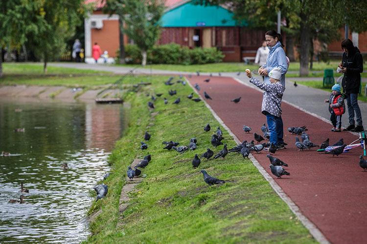 Казань рискует потерять федеральные деньги для благоустройства парков