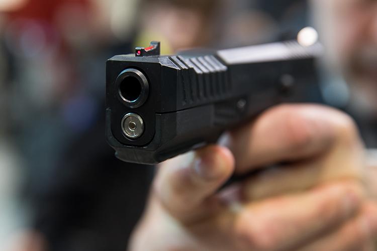 Согласно статистике Росгвардии поРТ, большая часть владельцев оружия вРТ(38тыс человек, или 84% отобщего числа) владеютгладкоствольным оружием. Это огнестрельное оружие состволом— ружья или гладкоствольные пистолеты, которые приобретают восновном для охоты, самообороны испорта