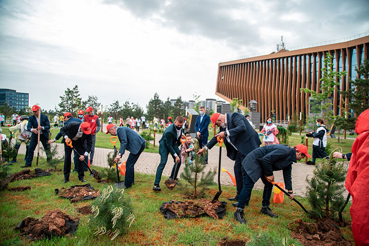 «Ежегодно город высаживает 500-700 деревьев, недавно возле технопарка елочки посадили»