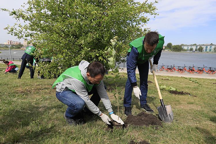 Посадка деревьев— одинизэтапов программы «Татнефти» «Циркулярный лес»