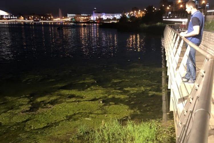 «Огромное количество плавающих водорослей— результат интенсивной инсоляции ижары, которая установилась вКазани. Также необходимо помнить, что озеро Кабан было очень сильно загрязнено втечение прошлых десятилетий, поэтому процесс его очистки окажется довольно продолжительным»