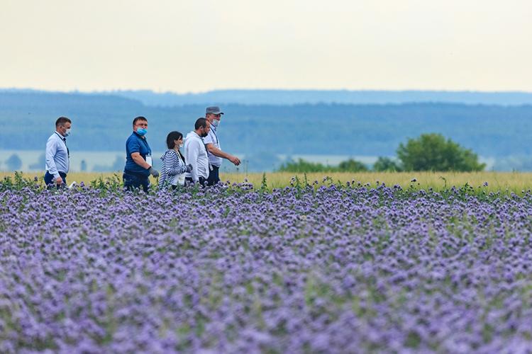 АГРОВОЛГА 2021— это выставка сопытными полями на48 гектарах, есть где развернуться
