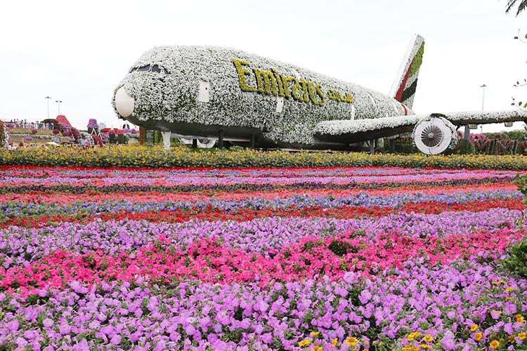 Что вызывает восхищение— так это сад цветов вДубае! Ноклимат унас другой