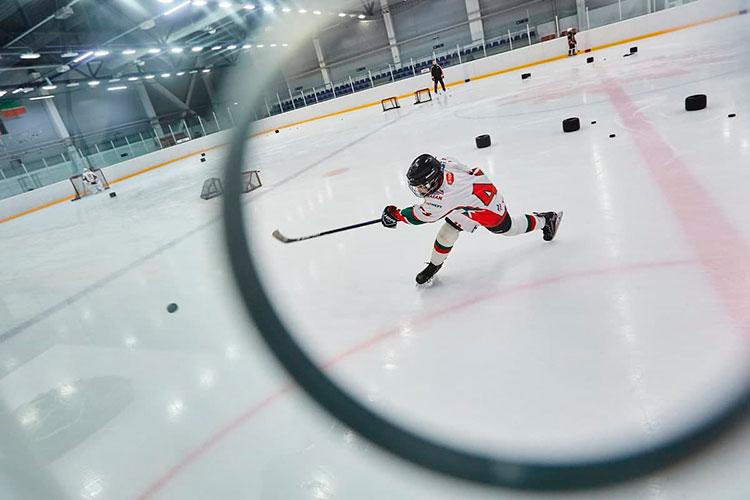 Спортивные федерации занимаются подготовкой спортсменов и их переходом в профессионалы, создают условия для тренировок и соревнований