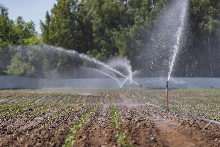 Впланах кооператива работать над сокращением очищенных сточных вод, аочищенную воду использовать вторично