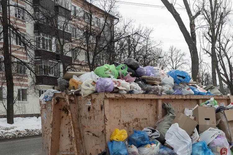 ЗооактивисткаЭльвира КутуеваизЕлабуги жалуется нанезаконную свалку вчерте города, которую, поеесловам, организовали власти города. Она уверяет, что при реализации программы «Наш двор» весь строительный мусор вывезлиненаполигон, авовраг закладбищем