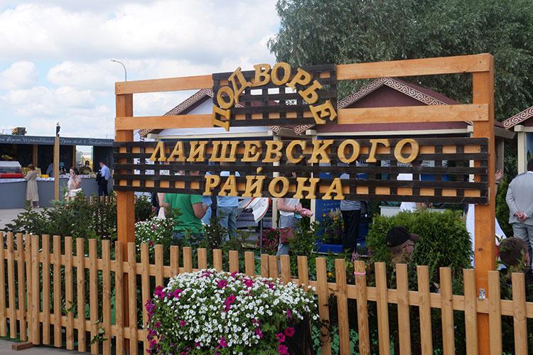 Больше всего отнедостатка влаги вТатарстане страдает Лаишевский район