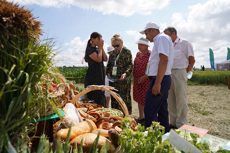 «Если дожди пойдут, то эффекта никакого не будет — зерно высохло уже», — рассказали «БИЗНЕС Online» аграрии на полях выставки «Агроволга-2021»