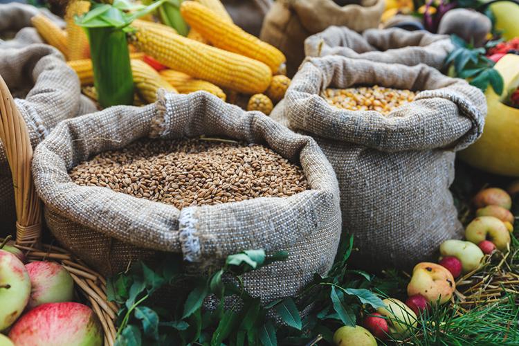 «Вот мыпока еще крупный экспортер зерна. Ицена нанего складываться будет так— мировая цена минус логистические расходы итак далее»